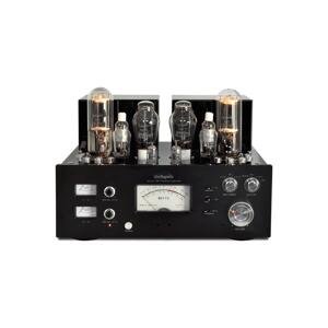 Line Magnetic Audio LM-845 Premium